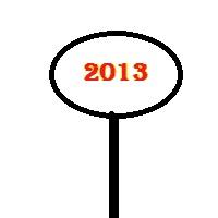 Das Jahr 2013